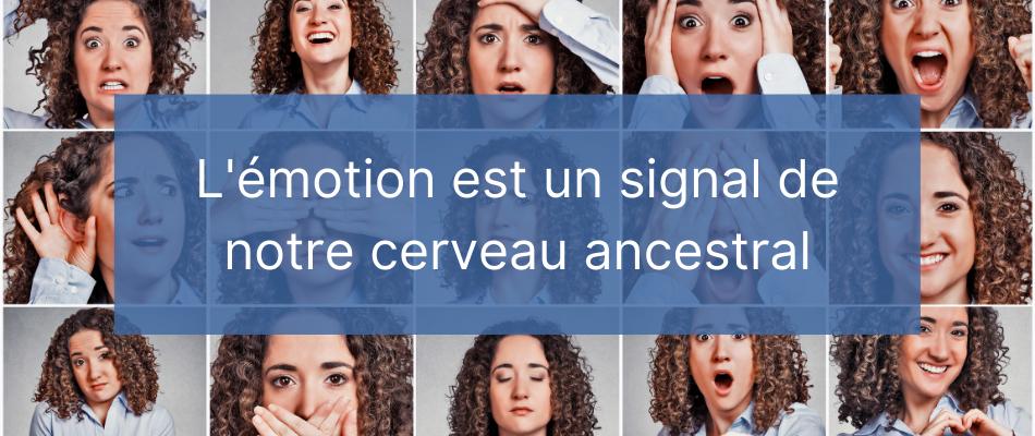 Gestion des émotions - Règle 4- Une émotion est un signal qui est difficile à comprendre